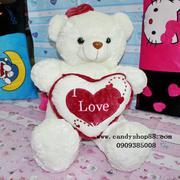 Gấu bông ôm tim chữ Love TNB-16