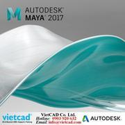 Phần mềm Autodesk Maya 2017 - Thuê bao 1 năm