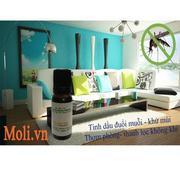 Bộ tinh dầu sả chanh đuổi muỗi (10ml) và đèn xông tinh dầu điện TTVG cam + Tặng 1 chai tinh dầu thôn...
