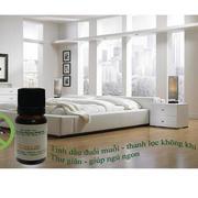 Bộ tinh dầu long não đuổi muỗi (10ml) và đèn xông tinh dầu điện size L AH05 + Tặng 1 chai tinh dầu b...
